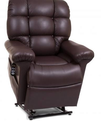 Electric Reclined Chair